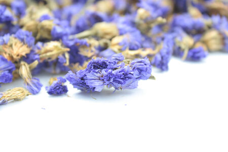 Dried lavender flowers photo