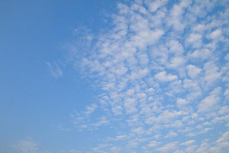 stratus: Cirrocumulus clouds in the clear sky