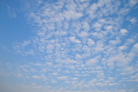 ���clear sky���: Cirrocumulus clouds in the clear sky
