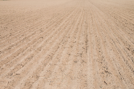 plough land: Spring farmland Stock Photo