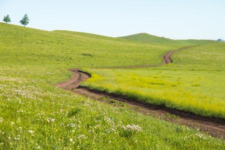 Road on the prairie