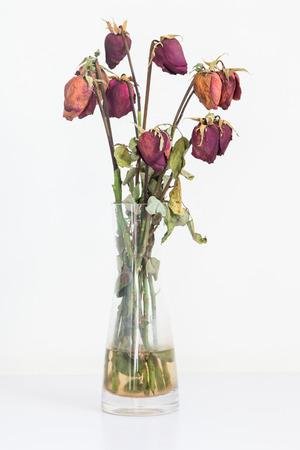 花瓶に枯れたバラ 写真素材