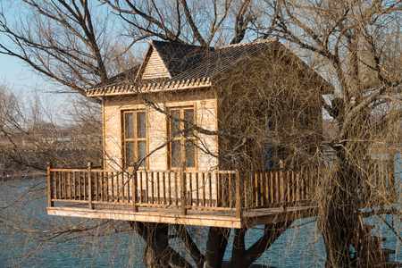 treehouse on the lake Editorial