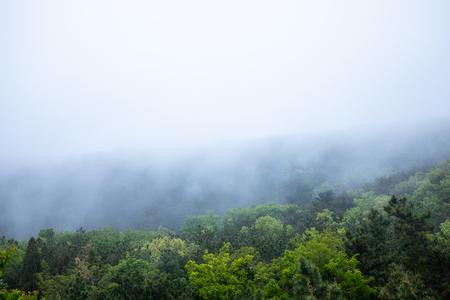 Mountain fog in the morning