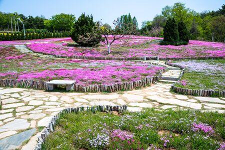 Garden landscape in Dalian, China Imagens