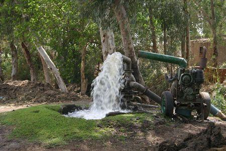 bomba de agua: Agricultura bomba de agua