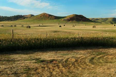 south dakota: South Dakota countryside Stock Photo