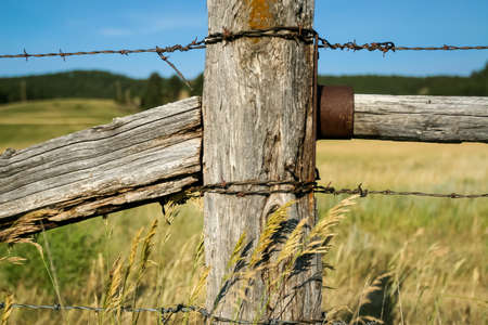 barbed wire and fence: Rustic Barbed Wire Fence