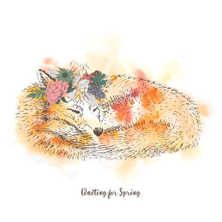 cute sleeping Fox. watercolor. graphics. freehand drawing