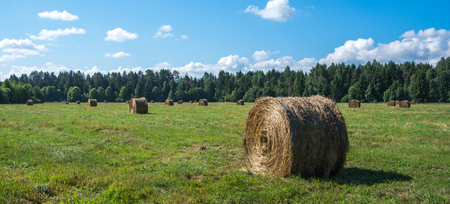 North European natural landscape with haystack photo