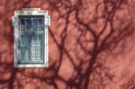 window shade: Ventana solitaria. Sombra de un �rbol en la pared roja.