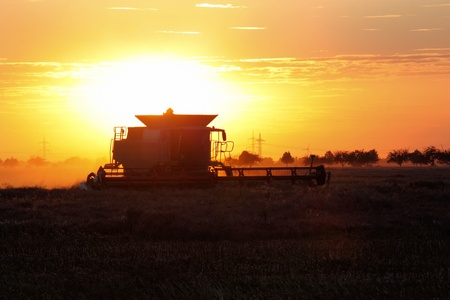combine harvester: Combine harvester at work in the sunset