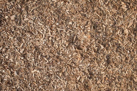 wood chip: Wood Chip texture Stock Photo