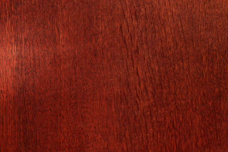 texture of natural wood Stock Photo