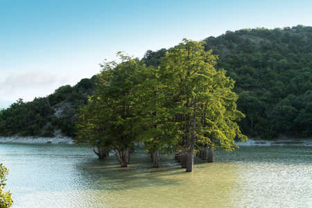 mountain lake with cypress trees