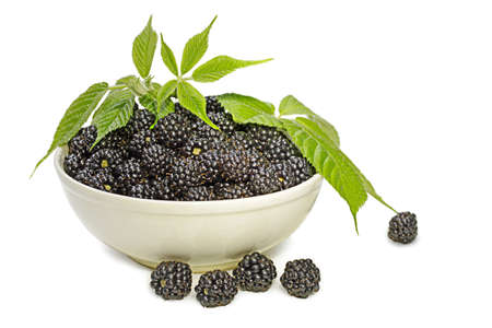 full bowl of blackberries decorated with foliage Stock Photo