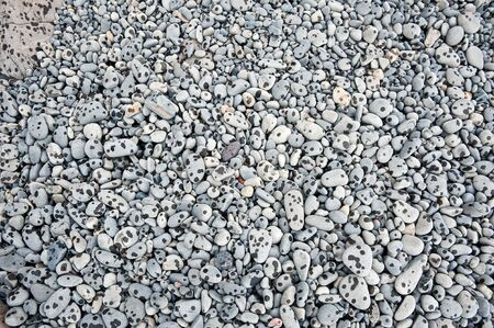 raindrops on the pebble on the seacoast photo