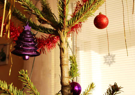 Christmas tree with purple and red decorations
