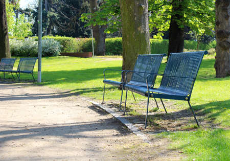 Spring time in park with blue bench