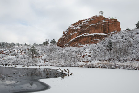 rock canyon: Red Rock Canyon after a fresh snowfall Stock Photo
