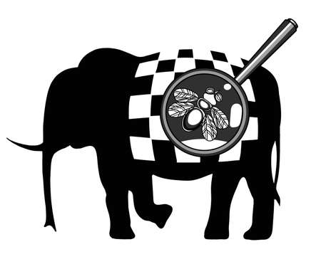 lupa: Black and white illustration with the image of a fly on an elephant with a checkerboard pattern.