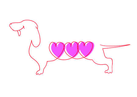 doxie: Line drawing of the Dachshund with three pink hearts. Illustration