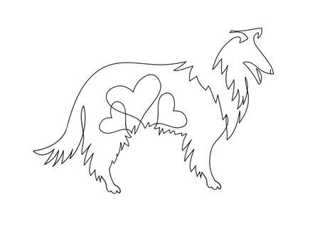 Collie Vector illustration drawn freehand.