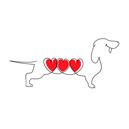 Dachshund with three hearts. Cartoon Dachshund in love. Heart of a dog. Vector illustration in flat style. Hand drawn vector illustration isolated on white, logo, t-shirt design.