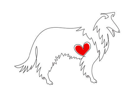Collie dog. Linear image. Tattoo dog with heart.