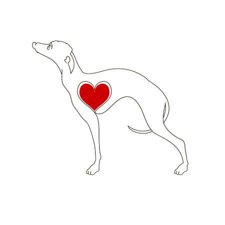 Dog breed Greyhound. Linear image. Tattoo dog with heart.