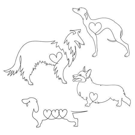 Set of four different dog breeds. Corgi, Dachshund, collie and Greyhound. Vector Illustratie