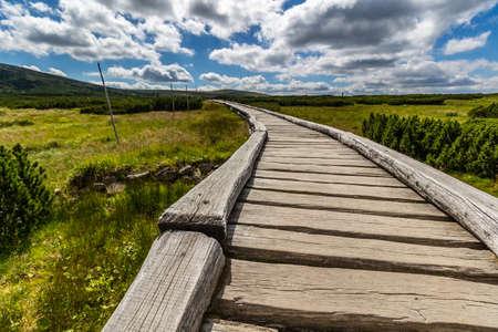 krkonose: Wooden walkway in the national park Krkonose, Czech Republic