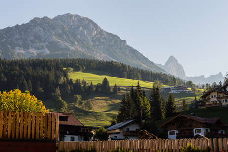 small details: Village with beautiful houses, flowers, small details, animals in springtime, Austria, Filzmoos
