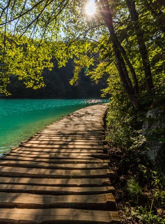 clear path: Deep forest stream path with crystal clear water in the sunshine. Plitvice lakes, Croatia