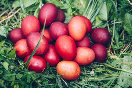 Red easter eggs on the grass with flowers and blowballs, spring holidays concept, naturally colored easter eggs with onion husks. Happy Easter, Christian religious holiday. Stock Photo