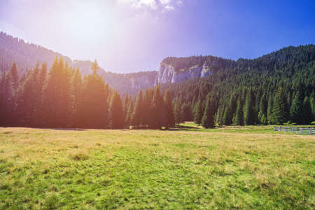 Landscape in Transylvania, Carpathian Mountains, Romania.