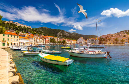 Hvar town with seagulls flying over city, famous luxury travel destination in Croatia. Boats on Hvar island, one of the many Islands near Dubrovnik and Korcula on the Dalmatian Coast of Croatia.