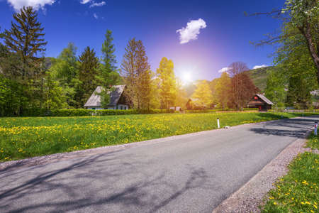 Landscape view of one wooden rural cottage on green meadow surrounded with green forest. Summer in Bohinj, Stara Fuzina, Slovenia,Europe. Zdjęcie Seryjne