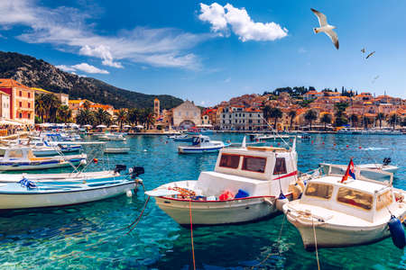 View at amazing archipelago with fishing boats in front of town Hvar, Croatia. Harbor of old Adriatic island town Hvar with seagulls flying over the city. Amazing Hvar city on Hvar island, Croatia. Banco de Imagens