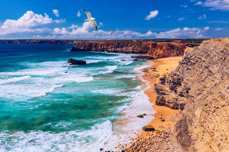 Panorama view of Praia do Tonel (Tonel beach) in Cape Sagres, Algarve, Portugal. Seagulls flying over Praia Do Tonel, beach located in Alentejo, Portugal. Ocean waves on Praia Do Tonel beach.
