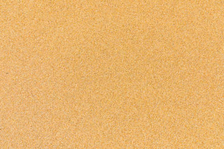 Primo piano del modello di sabbia di una spiaggia in estate. Archivio Fotografico