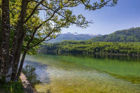 Lake Bohinj in Slovenia, beauty in nature. Colorful summer on the Bohinj lake in Triglav national park Slovenia, Alps, Europe. Mountain Lake bohinj in Julian Alps, Slovenia