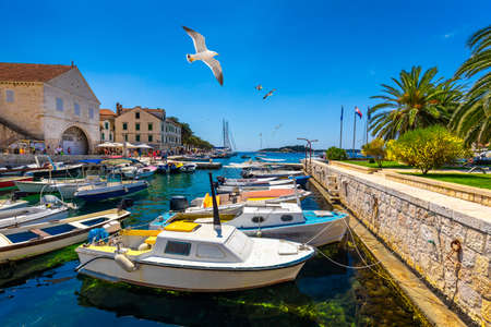 View at amazing archipelago with fishing boats in front of town Hvar, Croatia. Harbor of old Adriatic island town Hvar with seagulls flying over the city. Amazing Hvar city on Hvar island, Croatia. 写真素材