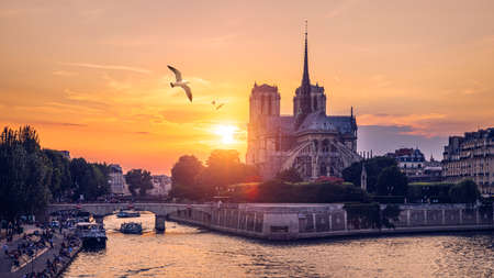 Notre Dame de Paris cathedral with seagulls flying over it, France. Notre Dame de Paris Cathedral, most beautiful Cathedral in Paris. Cathedral Notre Dame de Paris, destroyed in a fire in 2019, Paris.