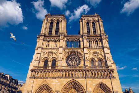 Notre Dame de Paris kathedraal met meeuwen die erover vliegen, Frankrijk. Notre Dame de Paris kathedraal, mooiste kathedraal van Parijs. Kathedraal Notre Dame de Paris, verwoest bij een brand in 2019, Parijs.