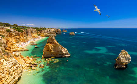 Praia da Marinha, beautiful beach Marinha in Algarve, Portugal. Navy Beach (Praia da Marinha) with flying seagulls over the beach, located on the Atlantic coast in Lagoa Municipality, Algarve. 스톡 콘텐츠