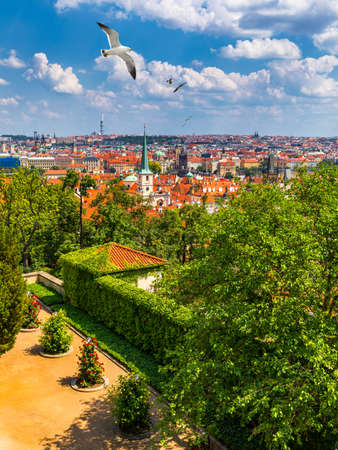 Prague red roofs and dozen spires of historical Old Town of Prague. Birds flying over red rooftops, spires and the Charles Bridge and Vltava River in the background. Prague, Czechia.
