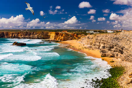 Panorama view of Praia do Tonel (Tonel beach) in Cape Sagres, Algarve, Portugal. Seagulls flying over Praia Do Tonel, beach located in Alentejo, Portugal. Ocean waves on Praia Do Tonel beach. Standard-Bild - 137153282