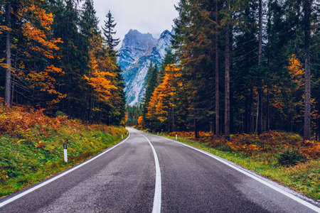 View of winding road. Asphalt roads in the Italian Alps in South Tyrol, during autumn season. Autumn scene with curved road and yellow larches from both sides in alp forest. Dolomite Alps. Italy 스톡 콘텐츠 - 139275560