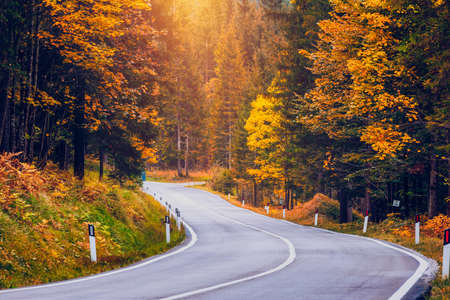 View of winding road. Asphalt roads in the Italian Alps in South Tyrol, during autumn season. Autumn scene with curved road and yellow larches from both sides in alp forest. Dolomite Alps. Italy Stockfoto - 139275563